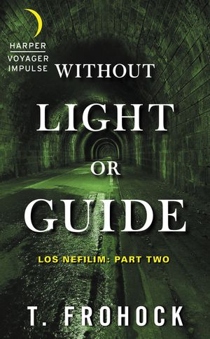 Without Light or Guide book image