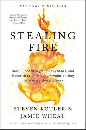 Cover image - Stealing Fire: How Silicon Valley, the Navy SEALs, and Maverick Scientists Are Revolutionising the Way We Live and Work