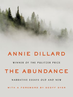 The Abundance book image