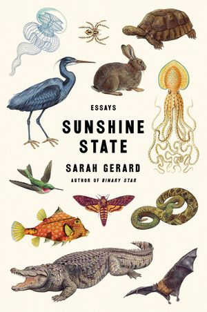 Sunshine State book image