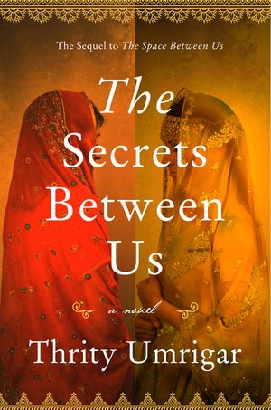 The Secrets Between Us book image