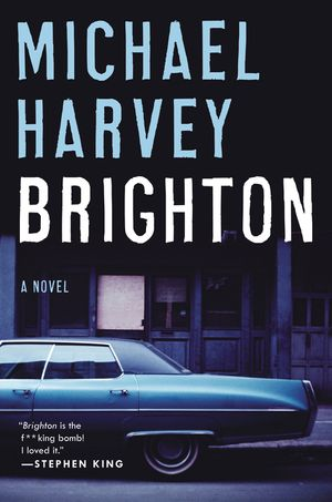 Brighton book image
