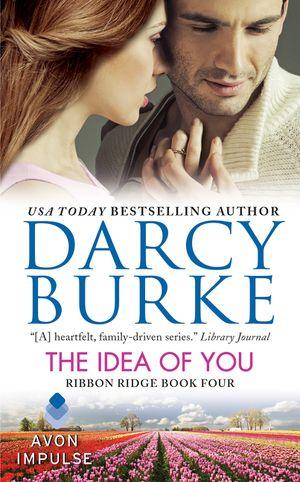 The Idea of You book image