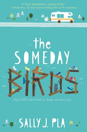 The Someday Birds book image
