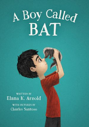 A Boy Called Bat book image