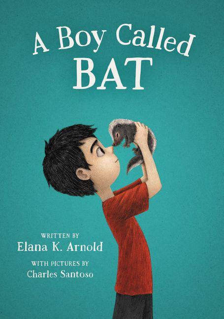 Image result for BOY CALLED BAT