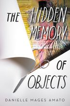 The Hidden Memory of Objects Hardcover  by Danielle Mages Amato