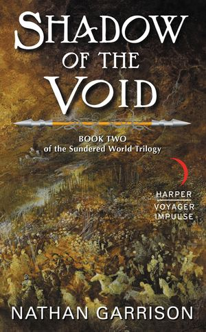 Shadow of the Void book image