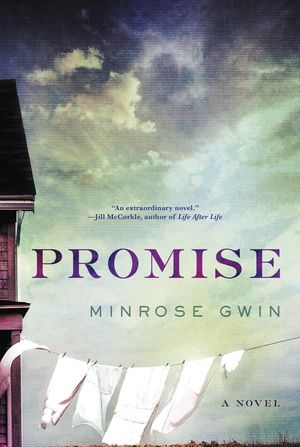 Promise book image