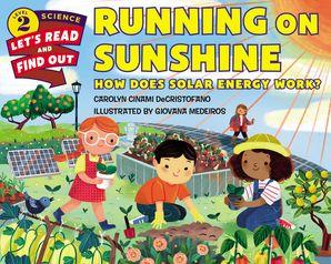 Running on Sunshine Paperback  by Carolyn DeCristofano