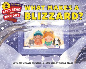 What Makes a Blizzard? book image