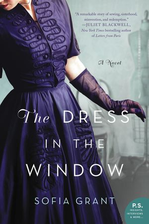 The Dress in the Window book image