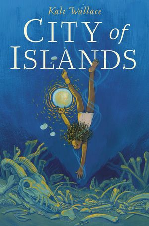 City of Islands book image