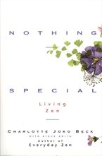 nothing-special
