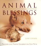 Animal Blessings Hardcover  by June Cotner