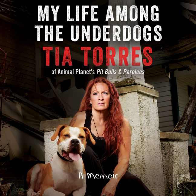 My Life Among The Underdogs Tia Torres Digital Audiobook