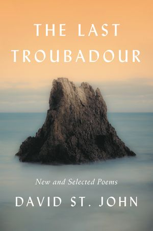The Last Troubadour book image