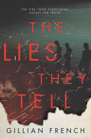 The Lies They Tell book image