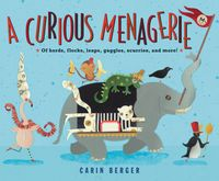 a-curious-menagerie