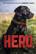 Hero Hardcover  by Jennifer Li Shotz