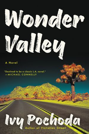 Wonder Valley book image