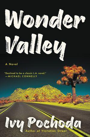 Wonder Valley book image
