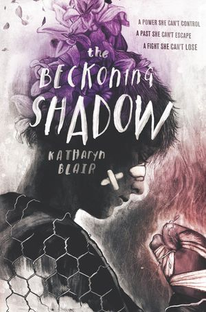 The Beckoning Shadow book image
