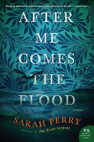 After Me Comes the Flood book image