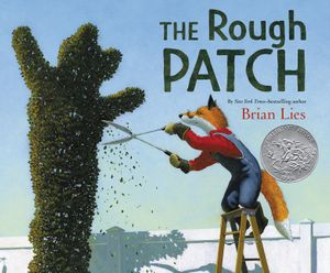 The Rough Patch book image