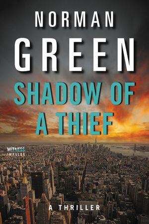 Shadow of a Thief book image
