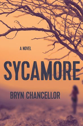 Cover image - Sycamore