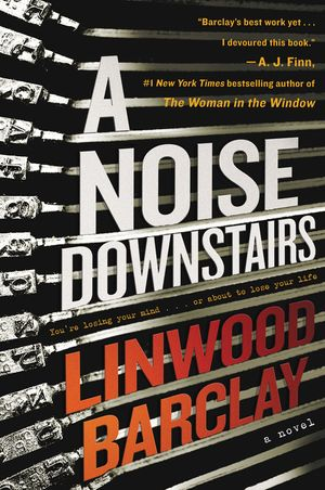 A Noise Downstairs book image