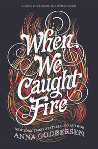 when-we-caught-fire