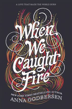 When We Caught Fire book image