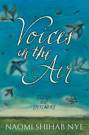 Voices in the Air book image