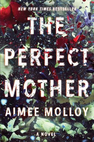 The Perfect Mother book image