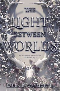 the-light-between-worlds