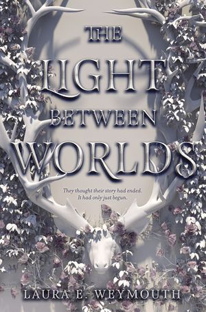 The Light Between Worlds book image