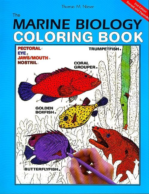 The Marine Biology Coloring Book, 2nd Edition - Coloring Concepts ...