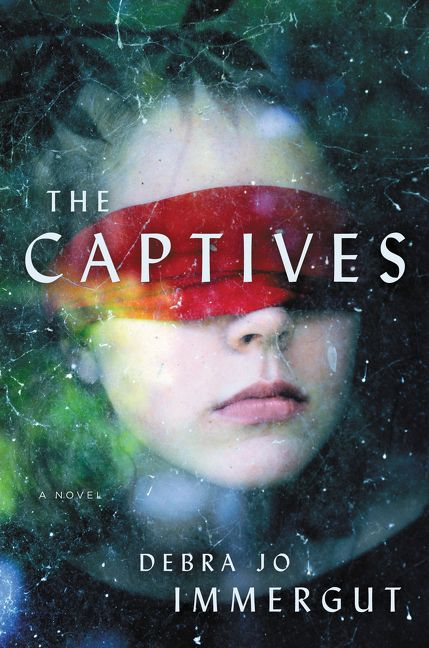 Image result for The Captives by Debra Jo Immergut