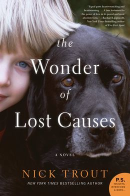 the-wonder-of-lost-causes