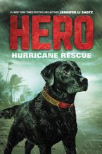 Hero: Hurricane Rescue Hardcover  by Jennifer Li Shotz