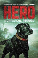 Hero: Hurricane Rescue