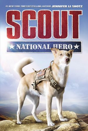 Scout: National Hero book image