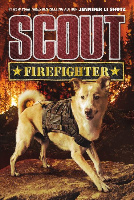 Scout: Firefighter - Jennifer Li Shotz - Hardcover