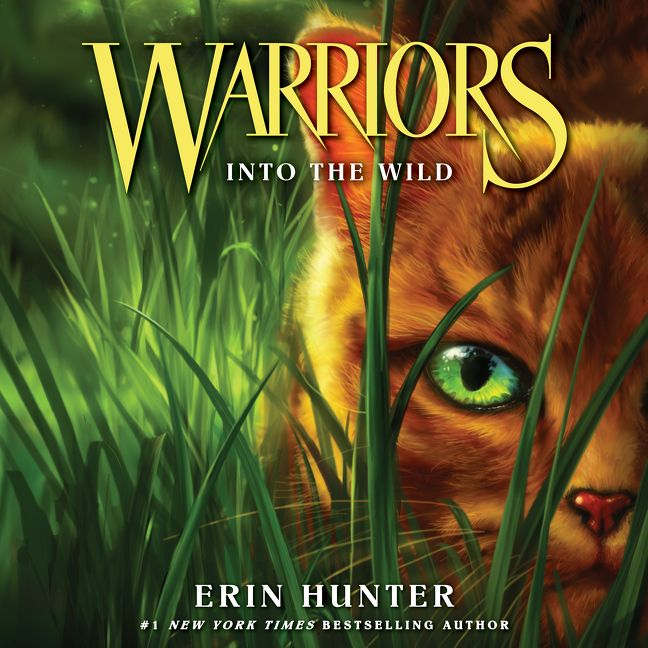 Book Trailer For Warriors Into The Wild