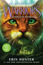 Warriors: The Broken Code #4: Darkness Within Hardcover  by Erin Hunter