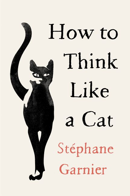 Book cover image: How to Think Like a Cat | International Bestseller
