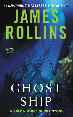 Ghost Ship book image