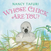 whose-chick-are-you-board-book